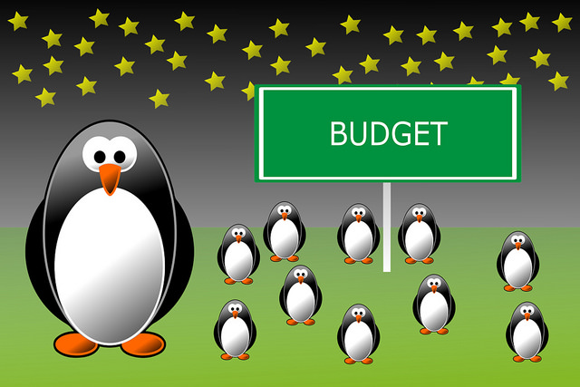 ActionCoach budget