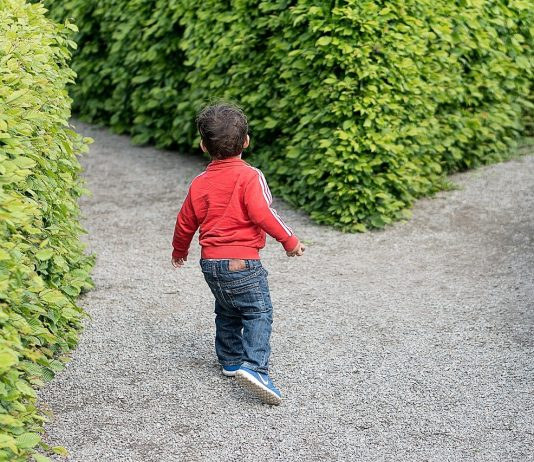 purposeful parent children