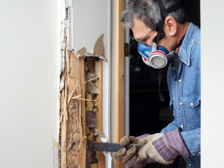simple steps to repair rotted wood on your home